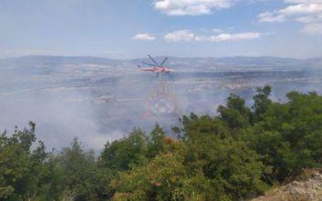 Ενισχύονται οι πυροσβεστικές δυνάμεις στη φωτιά της Τιθορέας Φθιώτιδος