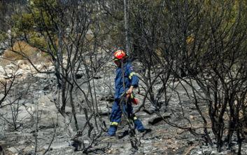 Οι εικόνες από την πυρκαγιά στον Υμηττό έκαναν τον γύρο του κόσμου