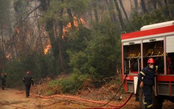 Πυρκαγιά στην περιοχή Πυργετού Λάρισας