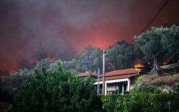 Πυροσβεστική: 56 φωτιές σε ένα 24ωρο