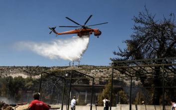 Μαίνεται η πυρκαγιά στη Σάμο, ενημερώθηκαν τουρίστες για προληπτική εκκένωση ξενοδοχείων
