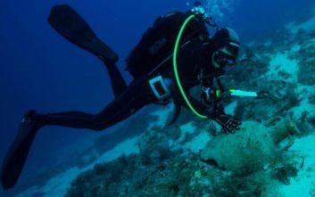 «Το δυνατό σημείο της Ελλάδας στον καταδυτικό τουρισμό είναι τα ναυάγια»