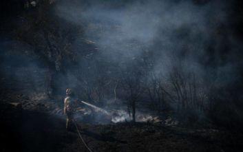 Εκατοντάδες στρέμματα καμένης γης άφησε πίσω της η φωτιά στο Ρέθυμνο