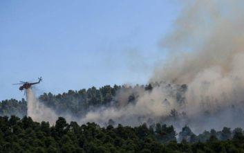 Χαμηλή η καμένη έκταση στη χώρα παρά τις φωτιές σε Μάτι και Εύβοια