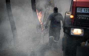 Ανοιχτό το ενδεχόμενο εμπρησμού στη φωτιά στην Εύβοια