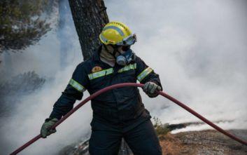 Δήμαρχος Νέας Μάκρης για τη φωτιά: Υπάρχουν βασικές υποψίες για εμπρησμό