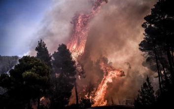 Ενισχύονται διαρκώς οι δυνάμεις στη φωτιά της Εύβοιας, στο σημείο και ο γγ Πολιτικής Προστασίας
