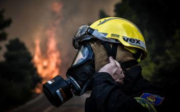 Υπό μερικό έλεγχο η φωτιά στην περιοχή Λευκοχώρι της Ηλείας