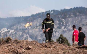 Φωτιά στο Πετρωτό Δομοκού: Ενισχύθηκαν οι δυνάμεις της Πυροσβεστικής