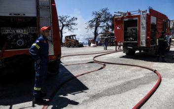 Πυρκαγιά σε χαμηλή βλάστηση στην περιοχή Αμυγδαλέα Λάρισας