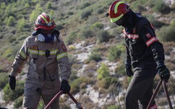 Υπό μερικό έλεγχο η δασική πυρκαγιά στη Σιθωνία Χαλκιδικής