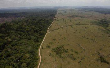 Ανησυχία από τη ραγδαία καταστροφή των δασών στη Βραζιλία