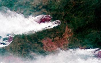 Φωτιές, καταιγίδες και κάμπιες - Η Σιβηρία «πληρώνει» ήδη την αλλαγή του κλίματος
