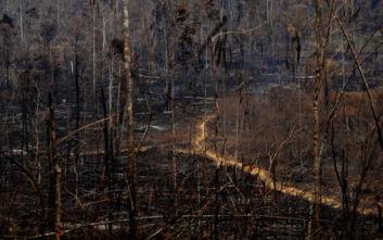 Συνεχίζει να γίνεται στάχτη το τροπικό δάσος του Αμαζονίου