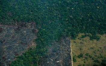 Αμαζόνιος: Η αποψίλωση του δάσους ξεπέρασε το φράγμα των 10.000 τετραγωνικών χιλιομέτρων