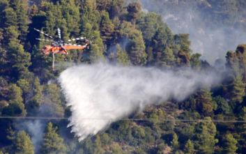 Μάχη με την πύρινη λαίλαπα στην Εύβοια, αντιπυρικές ζώνες για να περιοριστούν τα μέτωπα, εκκενώθηκαν 4 χωριά