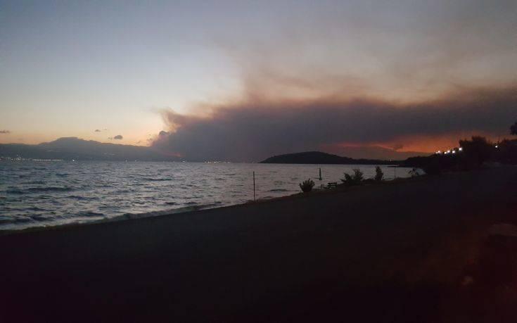 Μεγάλη φωτιά στην Εύβοια, καίγεται πευκοδάσος