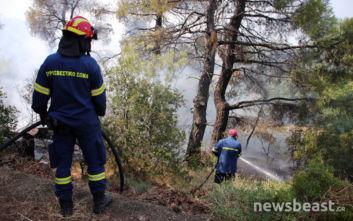 Μαρτυρίες κατοίκων από την Εύβοια: Η φωτιά ήταν βαλτή