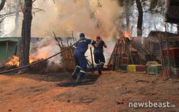 Νέες εικόνες από τη μάχη με την πύρινη λαίλαπα στο Μακρυμάλλη