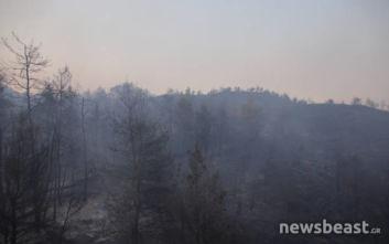Καιρός: Εξασθενούν οι άνεμοι, παραμένει υψηλός ο κίνδυνος πυρκαγιών