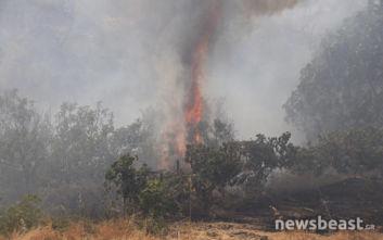 Οι σημαντικότεροι παράγοντες στην εξάπλωση μιας πυρκαγιάς