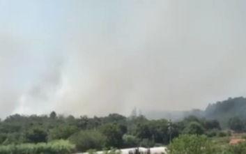 Δυναμώνει η φωτιά στην Κέρκυρα: Οι πρώτες εικόνες