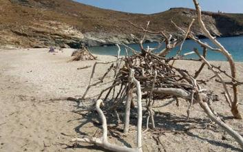 Άνδρος: Εντυπωσιάζουν η αράχνη και η γάτα στην παραλία της Άχλας