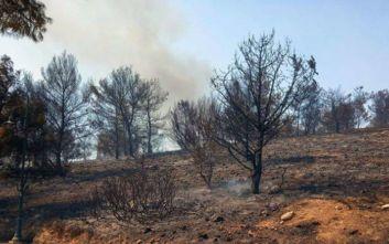 Υπό έλεγχο τέθηκε η μεγάλη φωτιά που ξέσπασε στη Λέρο