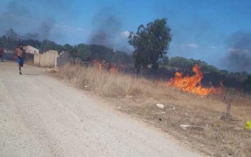 Φωτιά στην Κέρκυρα: Με λεωφορεία μεταφέρονται οι κάτοικοι των χωριών που εκκενώθηκαν