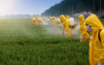 Ο αυξημένος κίνδυνος για τον άνθρωπο από την έκθεση σε φυτοφάρμακα