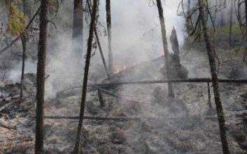 Σιβηρία: Συνεχίζονται οι προσπάθειες για την κατάσβεση των δασικών πυρκαγιών
