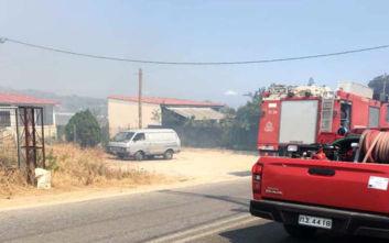 Φωτιά στην Αρτέμιδα: Η έκκληση της Πυροσβεστικής