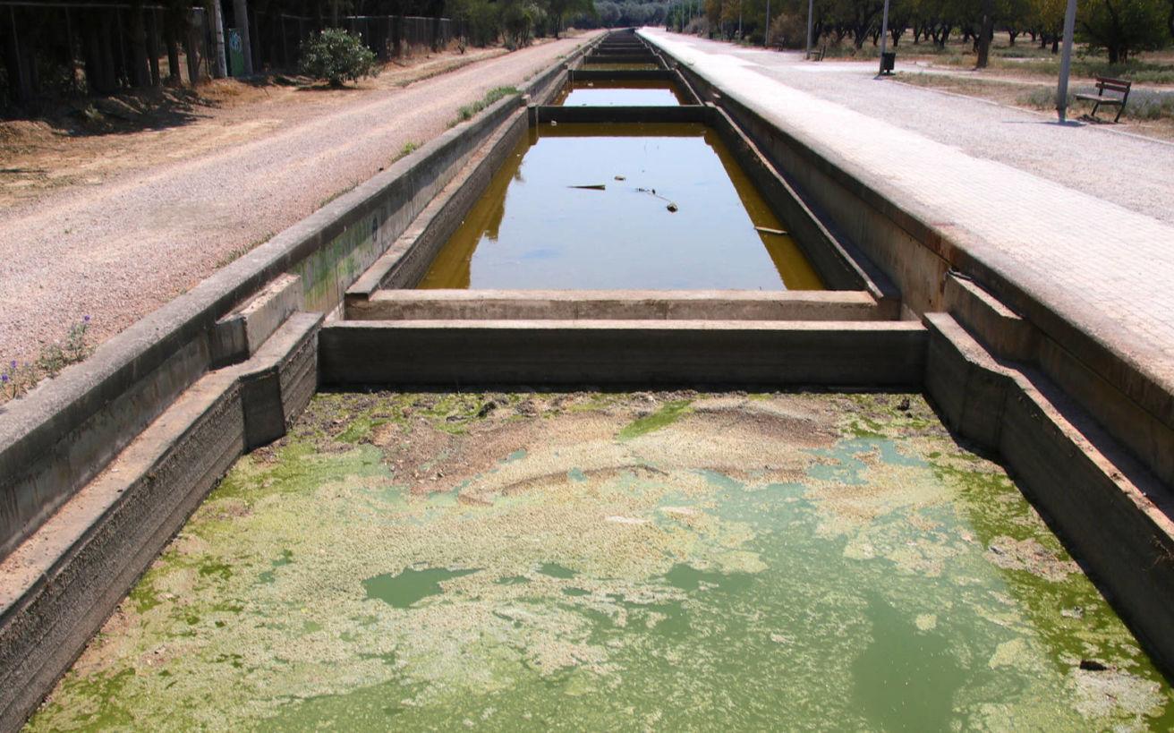 Αυτοψία: Σε τραγική κατάσταση τα ύδατα στο Μητροπολιτικό πάρκο «Αντώνης Τρίτσης»