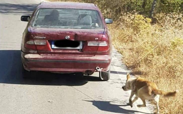 Έπιασαν τον 73χρονο που είχε δέσει σκύλο στο αμάξι και το έσερνε