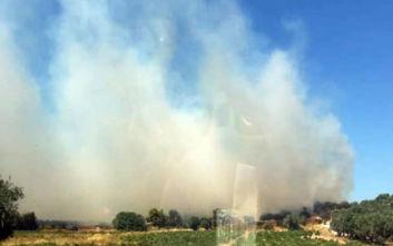 Φωτιά στην Αρτέμιδα: Πληροφορίες ότι καίγεται σπίτι
