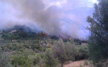 Ενισχύονται οι δυνάμεις της Πυροσβεστικής στην πυρκαγιά στη Φωκίδα