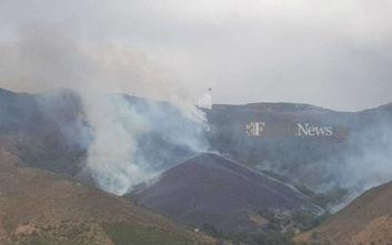 Συναγερμός για μεγάλη φωτιά στα Χανιά