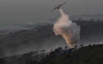 Κεφαλονιά: Πέντε εστίες φωτιάς σε λίγη ώρα σε Θήνια και Λαγκαδά