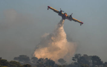 Πατούλης για τη φωτιά στη Νέα Μάκρη: Υπάρχουν ενδείξεις για εμπρησμό