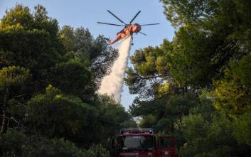 Φωτιά τώρα στη Λακωνία