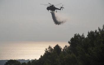 Σαράντα επτά πυρκαγιές εκδηλώθηκαν το τελευταίο 24ωρο σε όλη την Ελλάδα