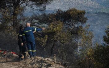 Περιφέρεια Αττικής: Άμεση ανταπόκριση στην αντιμετώπιση της φωτιάς στη Νέα Μάκρη