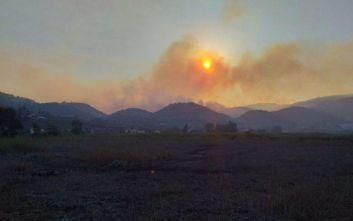 Χαρδαλιάς για φωτιά στη Ζάκυνθο: Δεκάδες ξενοδοχεία και κατοικίες γλίτωσαν από τα χειρότερα