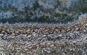 Το μέγεθος της οικολογικής καταστροφής στην Κορώνεια σε αεροφωτογραφίες