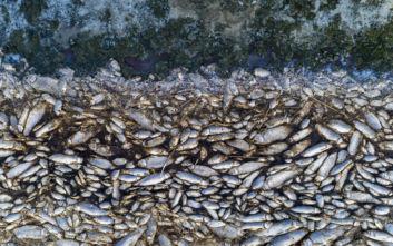 Μόνιμη επιτροπή συστήνεται για τη σωτηρία της λίμνης Κορώνειας