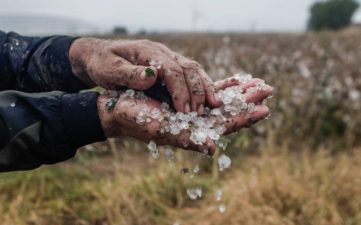 Τρίκαλα: Καλλιέργειες χιλιάδων στρεμμάτων καταστράφηκαν από τη χαλαζόπτωση