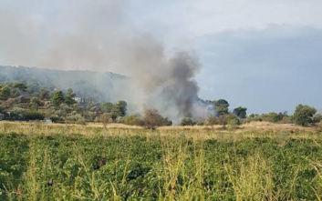 Φωτιά στην Παιανία τέθηκε υπό έλεγχο από την Πυροσβεστική