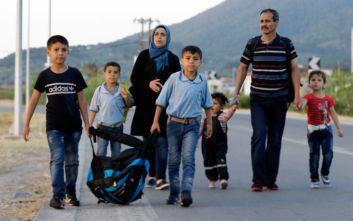 «Σκορπιοί, αρουραίοι και φίδια τσιμπάνε παιδιά στα προσφυγικά καμπ της Λέσβου»