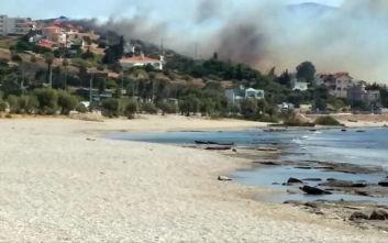 Οι πρώτες εικόνες από τη μεγάλη φωτιά στη Σαρωνίδα - Εκκενώνονται σπίτια