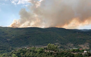 Οι πρώτες εικόνες από τη μεγάλη φωτιά στο Αγρίνιο